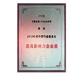 2013年最具影响力奖