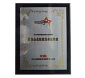 2009年度最佳易胜博官方网站服务提供商